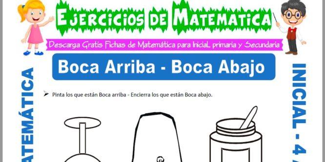 Ficha de Actividades de Boca Arriba y Boca Abajo para Niños de 4 Años