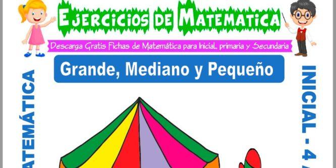 Ficha de Actividades de Grande, Mediano y Pequeño para Niños de 4 Años