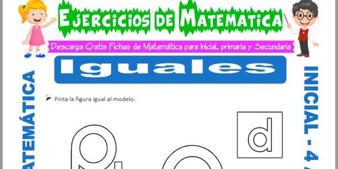 Ficha de Actividades de Igualdad para Niños de 4 Años