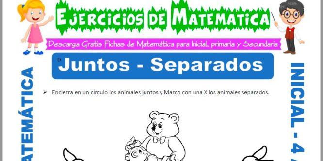 Ficha de Actividades de Juntos y Separados para Niños de 4 Años