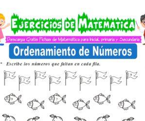Ejercicios de Orden de Números para Inicial de 5 Años