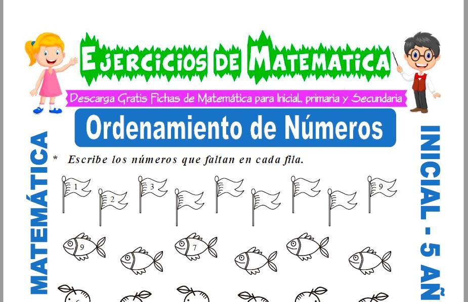 Modelo de la ficha de Ejercicios de Orden de Números para Estudiantes de Inicial de 5 Años.