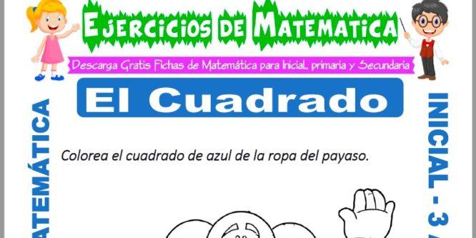 Ficha de Ejercicios de El Cuadrado para Inicial
