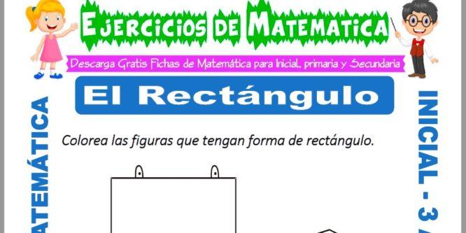 Ficha de Ejercicios de El Rectángulo para Inicial