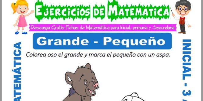 Ficha de Ejercicios de Grande y Pequeño para Inicial 3 de Años