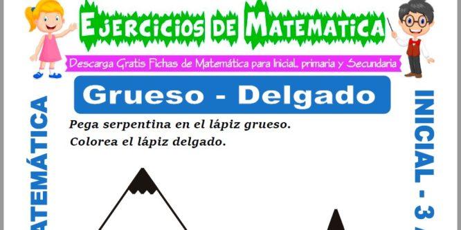Modelo de la ficha de Ejercicios de Grueso y Delgado para Estudiantes de Inicial de 3 Años.