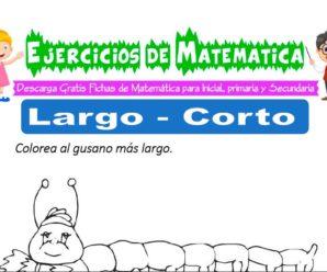Ejercicios de Largo y Corto para Inicial de 3 Años
