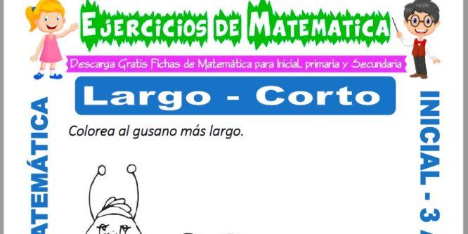 Ficha de Ejercicios de Largo y Corto para Inicial