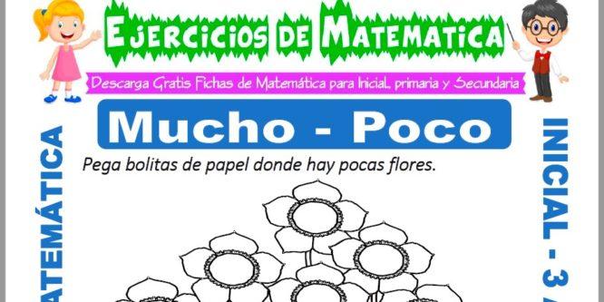 Ficha de Ejercicios de Mucho y Poco para Inicial