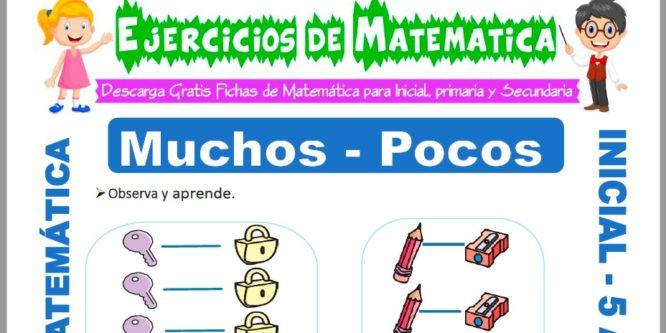 Ficha de Ejercicios de Muchos y Pocos para Niños de 5 Años