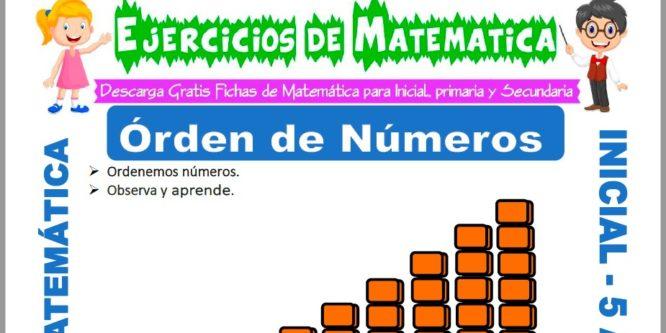 Ficha de Ejercicios de Ordenar Números para Niños de 5 Años