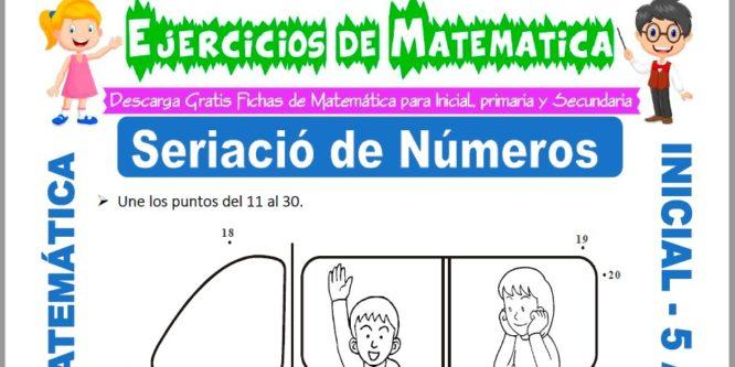 Modelo de la ficha de Ejercicios de Seriación de Números para Estudiantes de Inicial de 5 Años.