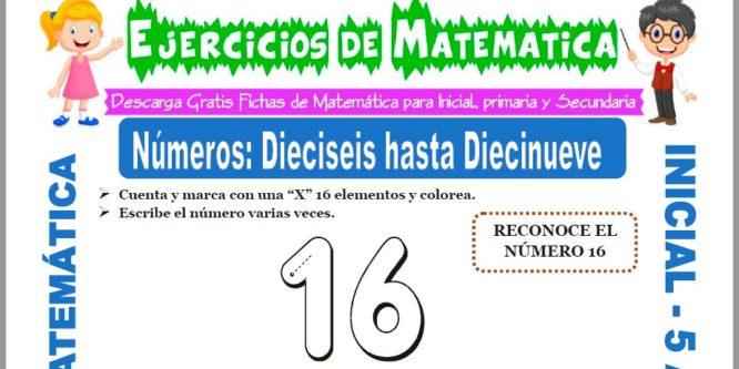 Modelo de la ficha de Ejercicios de los Números Dieciséis hasta el Diecinueve para Estudiantes de Inicial de 5 Años.