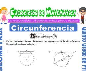 Ejercicios de Circunferencia para Quinto de Primaria