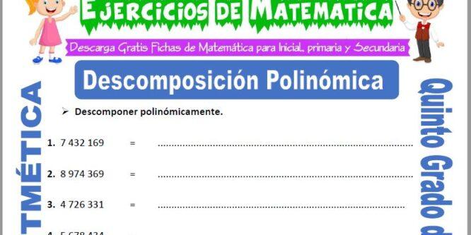 Descomposición Polinómica para Quinto de Primaria
