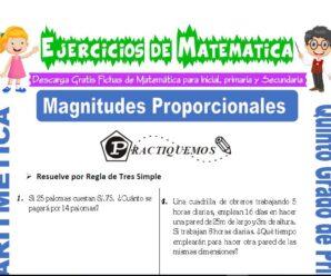 Ejercicios de Magnitudes Proporcionales para Quinto de Primaria