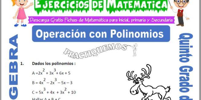 Operación con Polinomios para Quinto de Primaria