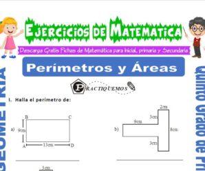 Ejercicios de Perímetros y Áreas para Quinto de Primaria