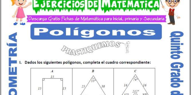 Polígonos para Quinto de Primaria