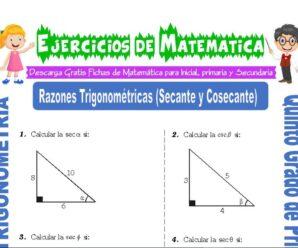 Ejercicios de Razones Trigonométricas (Secante y Cosecante) para Quinto de Primaria