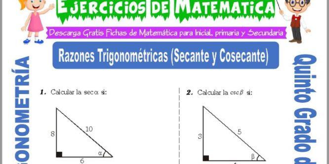 Actividades de Razones Trigonométricas (Secante y Cosecante) para Quinto de Primaria