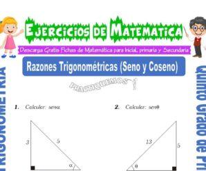 Ejercicios de Razones Trigonométricas (Seno y Coseno) para Quinto de Primaria