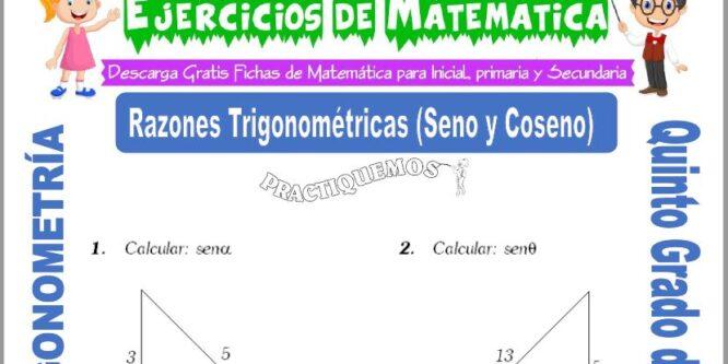 Actividades de Razones Trigonométricas (Seno y Coseno) para Quinto de Primaria
