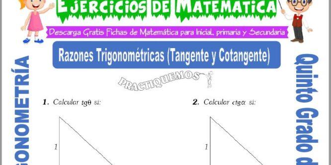 Actividades de Razones Trigonométricas (Tangente y Cotangente) para Quinto de Primaria