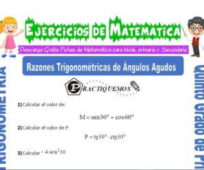 Ejercicios de Razones Trigonométricas de Ángulos Agudos para Quinto de Primaria