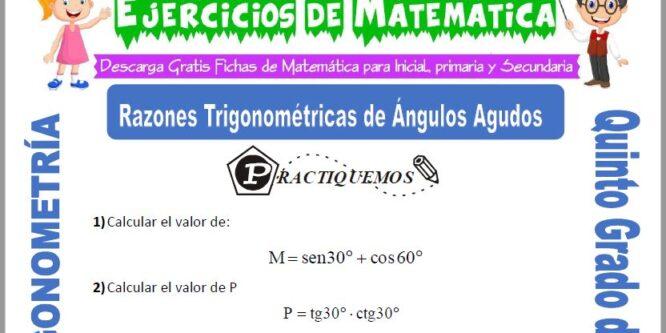 Actividades de Razones Trigonométricas de Ángulos Agudos para Quinto de Primaria