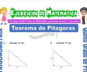 Ejercicios de Teorema de Pitágoras para Quinto de Primaria