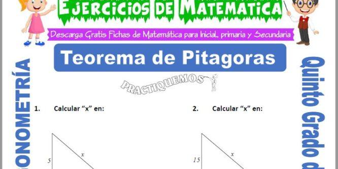 Actividades de Teorema de Pitagoras para Quinto de Primaria