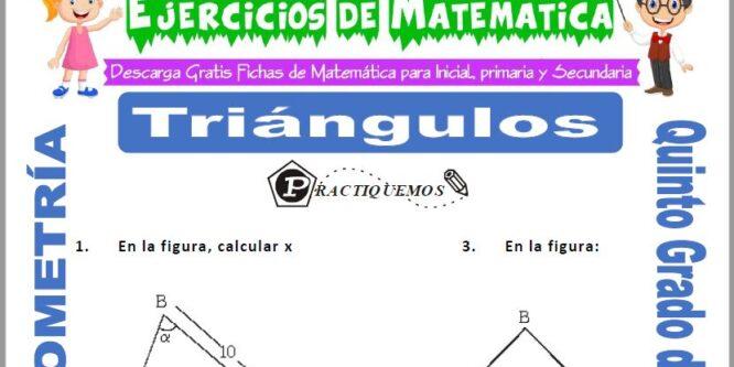 Triángulos para Quinto de Primaria