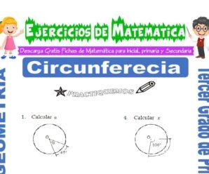 Ejercicios de Circunferencia para Tercero de Primaria