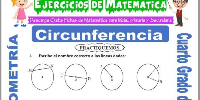 Ejercicios de Circunferencia para Cuarto de Primaria
