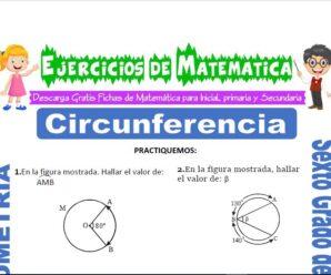 Ejercicios de Circunferencia para Sexto grado de Primaria