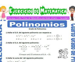 Ejercicios de Grado de Polinomios para Cuarto de Primaria