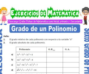 Ejercicios de Grado de un Polinomio para Sexto grado de Primaria