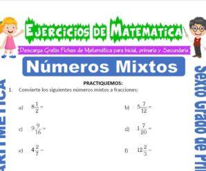 Ejercicios de Números Mixtos para Sexto grado de Primaria