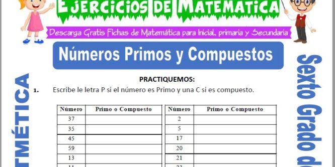 Números Primos y Compuestos para Sexto de Primaria