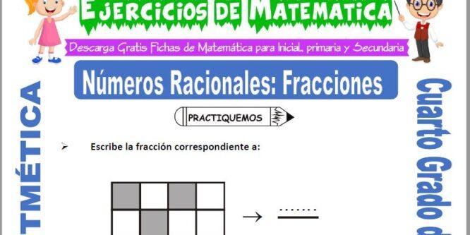 Ejercicios de Números Racionales Fracciones para Cuarto de Primaria