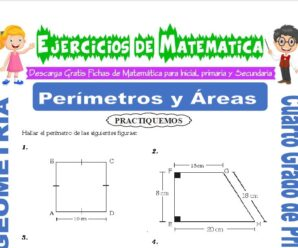 Ejercicios de Perímetros y Áreas para Cuarto de Primaria