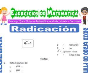 Ejercicios de Radicación para Sexto grado de Primaria