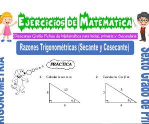Ejercicios de Razones Trigonométricas (Secante y Cosecante) para Sexto grado de Primaria