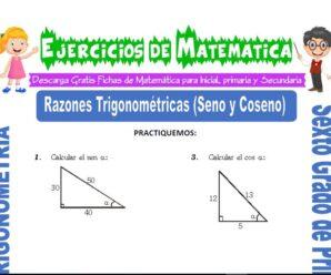 Ejercicios de Razones Trigonométricas (Seno y Coseno) para Sexto grado de Primaria