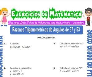Ejercicios de Razones Trigonométricas de Ángulos de 37 y 53 para Sexto grado de Primaria