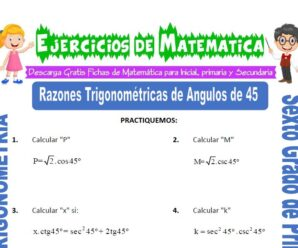 Ejercicios de Razones Trigonométricas de Ángulos de 45 para Sexto grado de Primaria