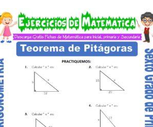 Ejercicios de Teorema de Pitágoras para Sexto grado de Primaria