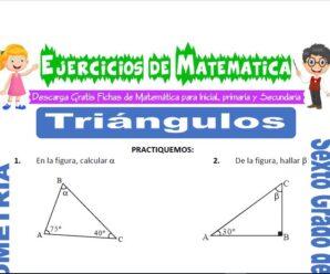 Ejercicios de Triángulos para Sexto grado de Primaria