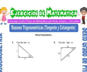 Ejercicios de Razones Trigonométricas (Tangente y Cotangente) para Sexto grado de Primaria